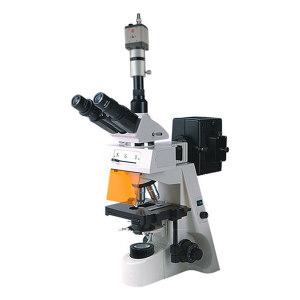 BM/彼爱姆 电脑落射荧光显微镜 BM-19AYC 无限远物镜40~1000倍 U/V/B/G激发 1台