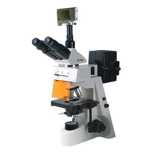 BM/彼爱姆 数码落射荧光显微镜 BM-19AYS 无限远物镜40~1000倍 U/V/B/G激发 1台
