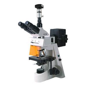 BM/彼爱姆 电脑落射荧光显微镜 BM-19AYD 无限远物镜40~1000倍 U/V/B/G激发 1台