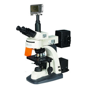 BM/彼爱姆 数码落射荧光显微镜 BM-21AYS 激发波段U(紫外)330~380nm V(紫)380~420nm 1台