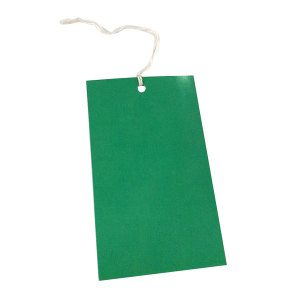ZKH/震坤行 纸菲子(绿色) 70110 70×110 1个