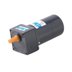 ZD/中大力德 微型交流减速电机 2IK6RGN-CM/2GN3K 1台