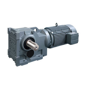 DONLY/东力 斜齿轮减速电机 DLKAF05-28-DM112M-4-M4-R-S:B I51.65 28RPM 4kW 1台