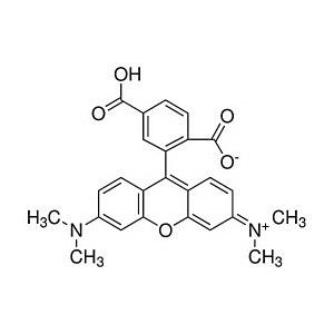 ALADDIN/阿拉丁 6-羧基四甲基罗丹明 C115506-100mg CAS号91809-67-5 ≥90% 用于荧光分析 100mg 1瓶