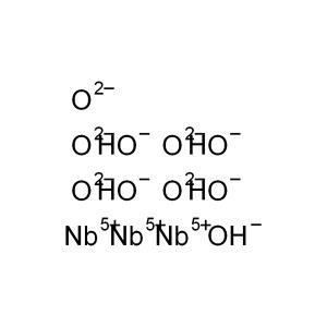 ALADDIN/阿拉丁 氢氧化铌% N193049-25g CAS号37349-30-7 99% 含水20% 25g 1瓶
