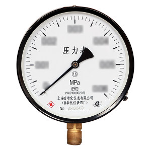 SZY/上自仪 一般压力表(铁+铜) Y-100/0~1.6MPa/M20×1.5/1.6级 1个