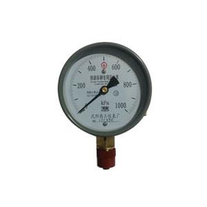 RG/热工 专用压力表 Y100.0-1600KPa 1块