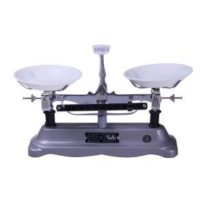 MATO/马头 架盘天平 JYT-10 称量范围0~1kg 分度值1g 1台