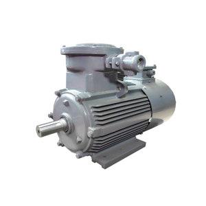 WANNANMOTOR/皖南电机 YBBP系列隔爆型变频三相异步电动机 YBBP-100L2-4 B3 dⅡBT4 1台