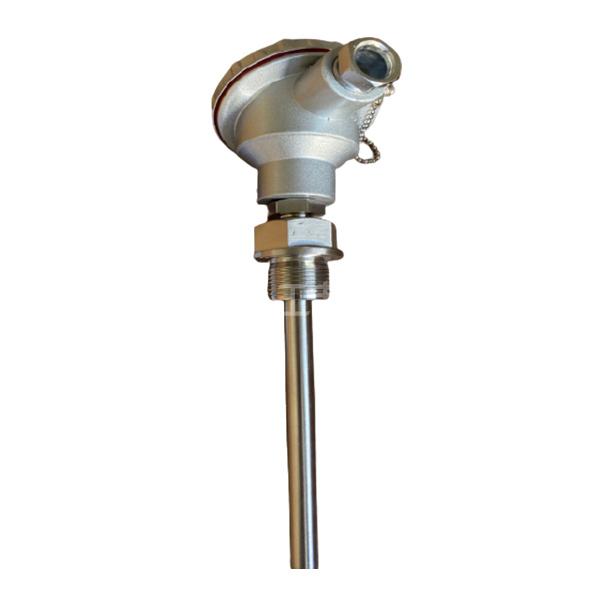 AH/安徽福润 耐震热电阻 ZRWNR-230 L=500mm 1根