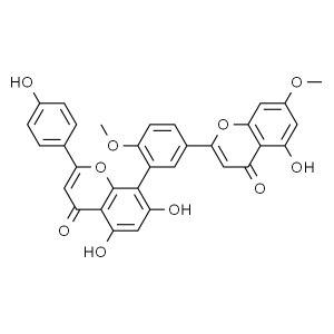 JK/百灵威 银杏双黄酮 776409-5mg 来源于银杏叶 1瓶