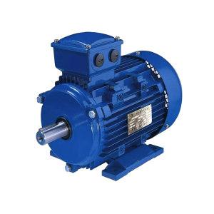 LX/立新 永磁同步电机 TYB-801-3000-0.75KW 1台
