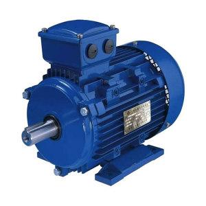 LX/立新 永磁同步电机 TYB-160M2-3000-15KW 1台