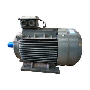 WANNANMOTOR/皖南电机 YE3系列超高效率三相异步电动机 YE3-225S-4 37kW B3 380V 顶出线 1台