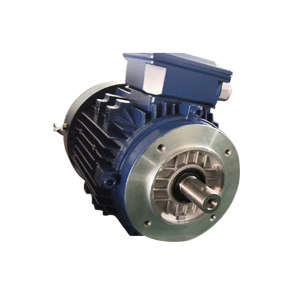 DASU/大速 YE2系列三相异步电动机 YE2-71M2-4 0.37kW B14 380V 1台