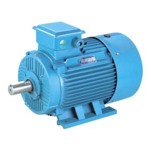 DASU/大速 三相异步电动机 YE2-132S1-2 5.5kW B3 1台