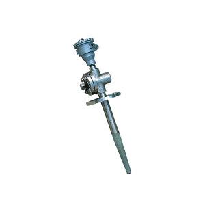 HG/红光 耐磨型双支热电阻 NKWZP2-230HG 1支
