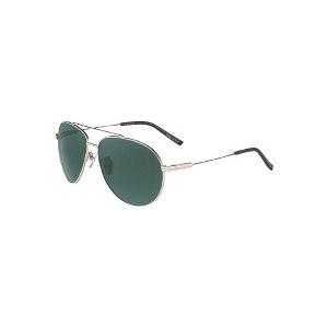 HORIEN/海俪恩 男士太阳眼镜 N6358P02 1个