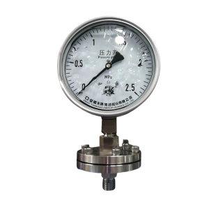 TK/安徽天康 膜片压力表 YNMF-100B 0~0.4MPa/M20×1.5 DN40 PN1.0 径向 抗震 316L 1个