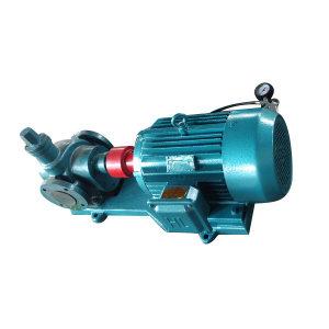 BYD/泊远东 齿轮泵 YCB50/0.3 机械密封 Y22KW-6P 1台