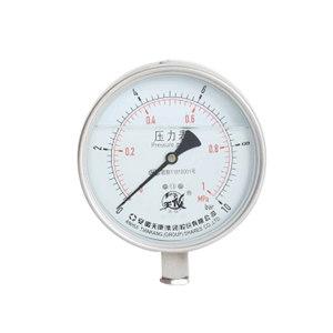 TK/安徽天康 高原抗震压力表 YTN-100 0~2.5MPa 不锈钢耐震 M20×1.5 1支