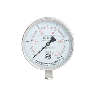 TK/安徽天康 高原抗震压力表 YTN-100 0~1MPa 不锈钢耐震 M20×1.5 1支