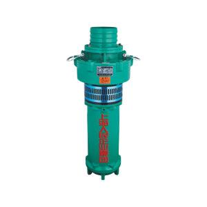 SRM/人民水泵 潜水泵 QY100-10-5.5 出口100mm 额定流量100m3/h 额定扬程10m 5.5kW 380V 定制产品 1台