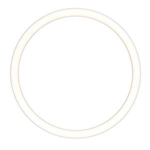 GODO/固德 隔膜泵球座密封圈 QBY3-32/40SFQZMFQ密封圈 1个