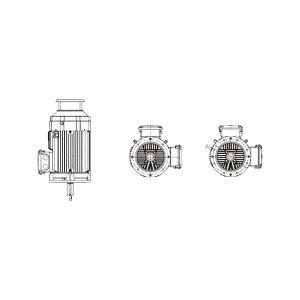 FLOTEQ/孚力彤 水泵电机 YE3-132S2-2  3×380V/50Hz/7.5kW/2P/IE3/V1 1台