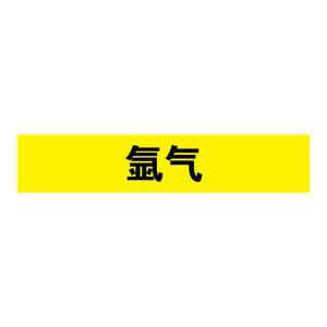 SAFEWARE/安赛瑞 管道介质标识贴(氩气) 14993 25*125mm 1包