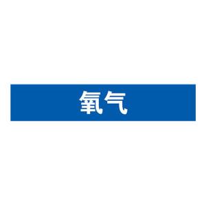 SAFEWARE/安赛瑞 管道介质标识贴(氧气) 15065 25*125mm 1包
