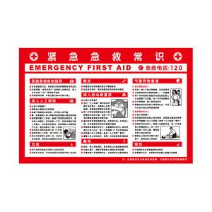 SAFEWARE/安赛瑞 安全教育挂图(紧急急救常识) 30401 500*750mm 1张