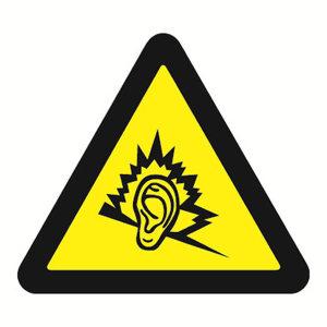 SAFEWARE/安赛瑞 GB安全警示标签(噪声有害) 32831 边长100mm 1包