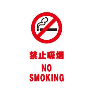 SAFEWARE/安赛瑞 V型标识(禁止吸烟) 39050 单面150*300mm 自发光板 1个
