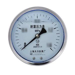 TC/天川 普通不锈钢耐震压力表(轴向 不带边) Y60/0-1MPA/G1/4 普通不锈钢/耐震/不带边/2.5级 1个