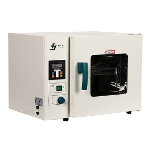 JINGHONG/精宏 台式电热恒温鼓风干燥箱 DHG-9203A 1台