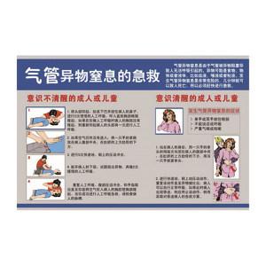 SAFEWARE/安赛瑞 应急安全教育挂图(气管异物窒息的急救) 20378 500*750mm 1张