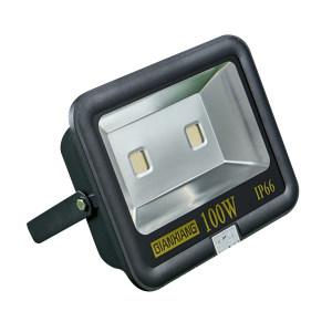 QIANXIANG/千象 LED投光灯 TG-FG100 100W 6400K白光 1套
