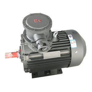 JIAMUSI/佳木斯 粉尘防爆电动机 YFB3 200L2-2 37kW IP65 380V 绝缘等级H级 1台
