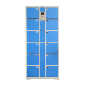 ZKH/震坤行 智能储物柜 DJ-12-BAR CODE H1800*L820*D460,单门尺寸:H270*L300*D460,条码开门,蓝门灰柜 1个