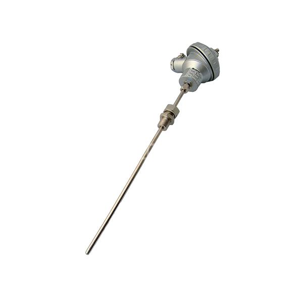 AH/安徽福润 热电偶 PRNM-650 1个