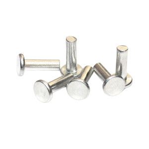 ZKH/震坤行 GB109 平头铆钉 不锈钢304 本色 2100032-5000500000 φ2.5×5 2000个 1包