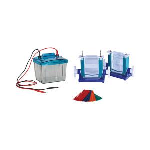 AS ONE/亚速旺 经济型垂直电泳仪 CC-4533-01 100×85mm 850mL(2块胶)/1.2L(4块胶) 1台