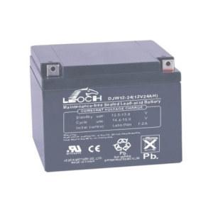 LEOCH/理士 阀控式铅酸蓄电池 DJW12-24 1节