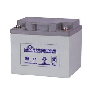 LEOCH/理士 阀控式铅酸蓄电池 DJM1238 1节